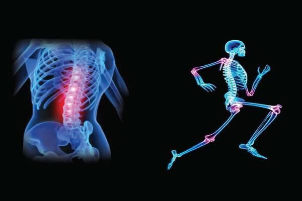 lower back pain exercises ortho